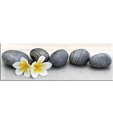 Dilan stone          dekor     25x75
